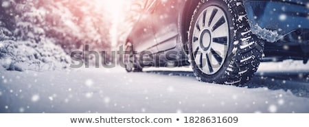 Car under the snow  Stock photo © remik44992