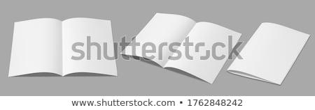 Dwa pusty papieru biały tle karty Zdjęcia stock © romvo