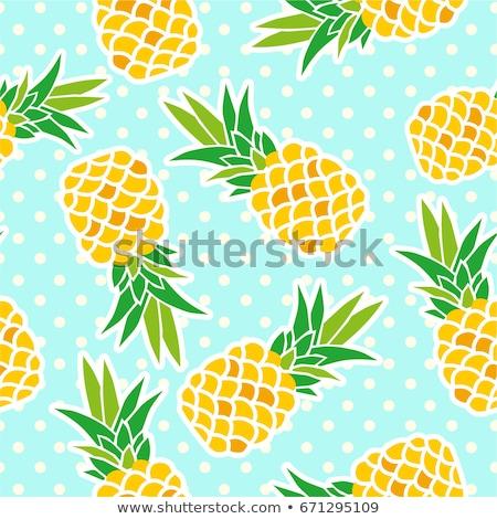 Vektör toplama ananas desen Stok fotoğraf © freesoulproduction