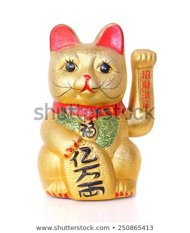 китайский удачливый кошки лапа Сток-фото © nito