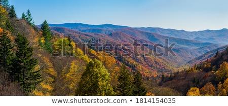füstös · hegyek · gyönyörű · kilátás · nagyszerű · égbolt - stock fotó © tmainiero