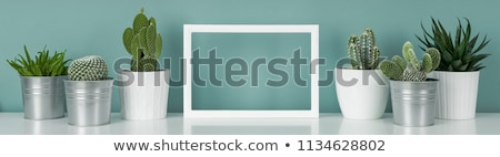 Teal or Turquoise Picture Frame Stock photo © Stephanie_Zieber