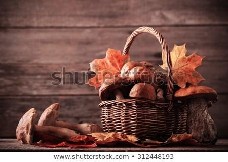 лес · съедобный · грибы · плетеный · корзины - Сток-фото © zoryanchik
