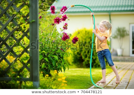 baby girl watering the garden with hose stock photo © filipw