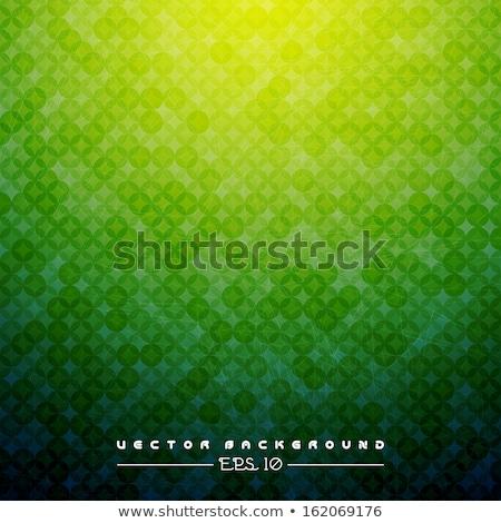 баннер зеленый ювелирные черно белые бабочки Сток-фото © blackmoon979