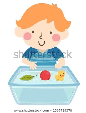 pequeno · pato · flutuante · água · isolado · grama - foto stock © mady70