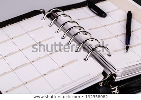 vector · Open · persoonlijke · organisator · nota · business - stockfoto © oblachko