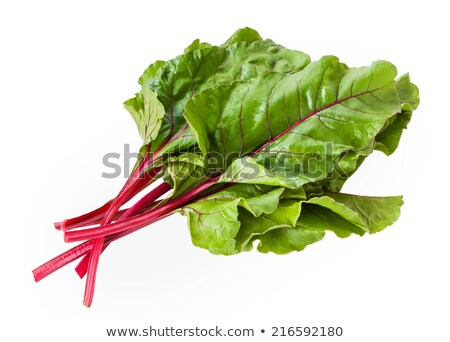 Fresh mangold leaves, swiss chard or leaf beet Stock photo © yelenayemchuk