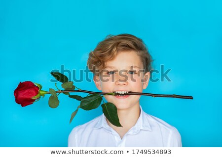 Young boy holding rose smiling Stock photo © monkey_business