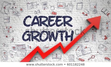 career growth drawn on brick wall stock photo © tashatuvango