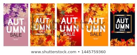 autumn designs collection stock photo © ivaleksa