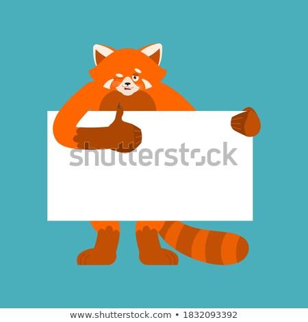 panda · rajz · üres · tábla · baba · arc · boldog - stock fotó © popaukropa