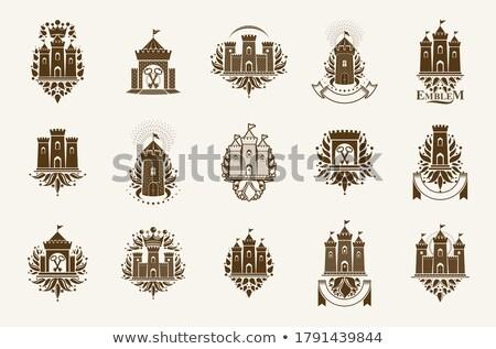 oroszlán · kabát · karok · címer · középkori · embléma - stock fotó © genestro
