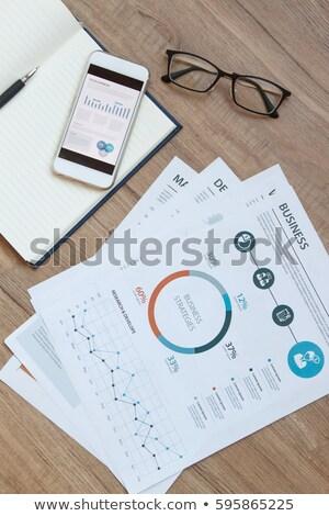 controleren · verslag · vulpen · pen · financieren · kwaliteit - stockfoto © tashatuvango