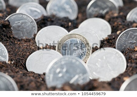 Harvesting money, one euro coin in handful of soil Stock photo © stevanovicigor