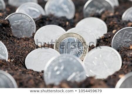 ユーロ · コイン · お金 · 印刷 · ターコイズ - ストックフォト © stevanovicigor