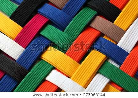 Karate uniform and brown belt Stock photo © wavebreak_media