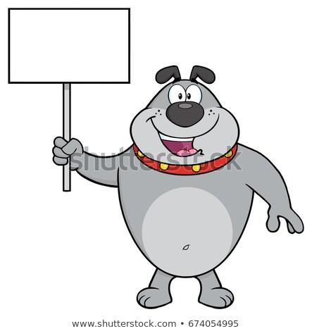 Stok fotoğraf: Happy Gray Bulldog Cartoon Mascot Character Holding A Blank Sign
