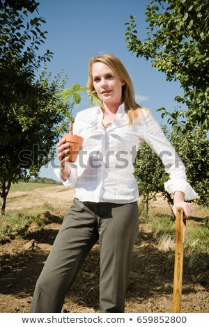 Woman leaning on spade holding plant. Stock photo © IS2