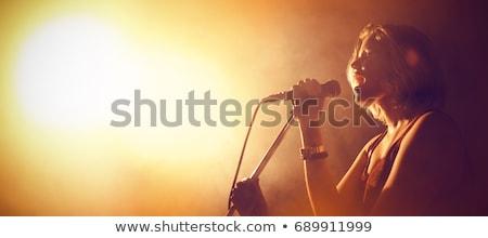 Kadın şarkıcı mikrofon gece eğlence çalışma Stok fotoğraf © IS2