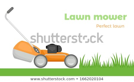 The gardener cutting grass with lawn mower. Stock photo © Nobilior