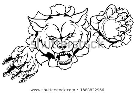 Сток-фото: Wolf Tennis Mascot Breaking Background