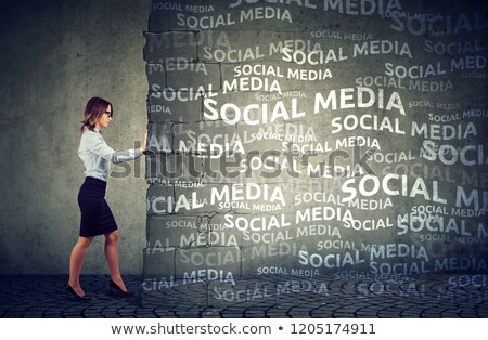 social · media · muur · tekstballon · icon · baksteen · business - stockfoto © ichiosea