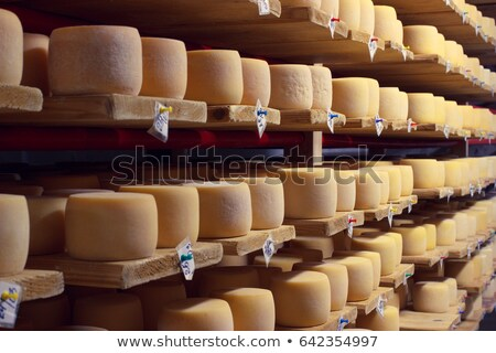 Wheels of aging cheese  Stock photo © grafvision