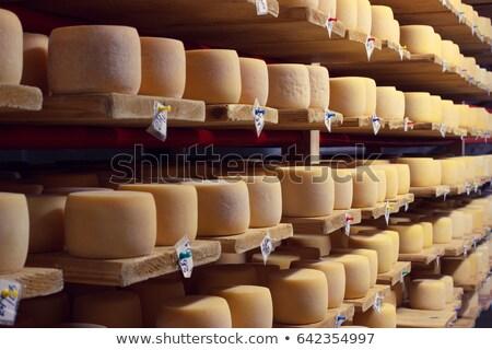 Koła starzenie się ser półki fabryki Zdjęcia stock © grafvision