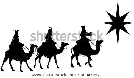 Três reis camelos presentes noite sorrir fundo Foto stock © Imaagio