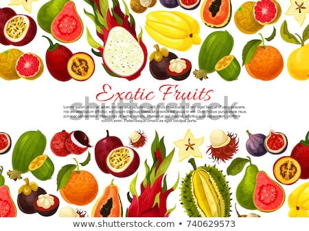 Pitaya Pitahaya Exotic Juicy Fruit Vector Poster Stock photo © robuart
