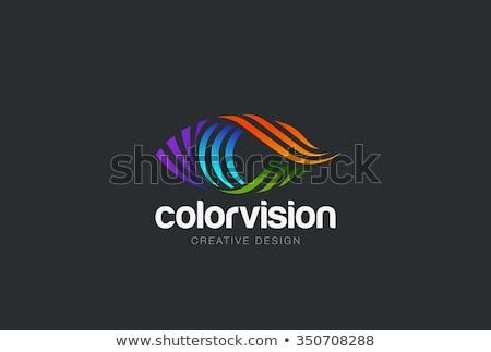 Göz vektör logo imzalamak simge dizayn Stok fotoğraf © blaskorizov