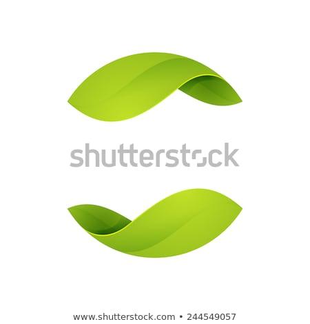 leaf green eco symbol logo icon circle vector stock photo © blaskorizov