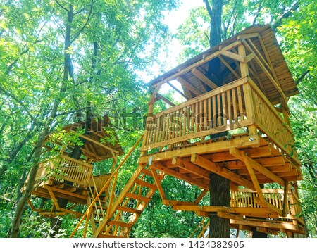 Treehouse in nature landscape Stock photo © bluering