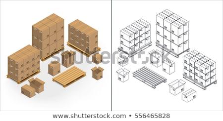 cor · isométrica · ícones · isolado · vetor - foto stock © netkov1
