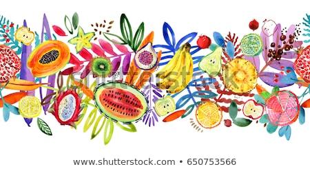 Zöld vízfesték illusztráció festék gyümölcs konyha Stock fotó © ConceptCafe