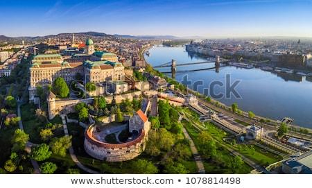 Budapeste brilhante pôr do sol famoso água nuvens Foto stock © Givaga