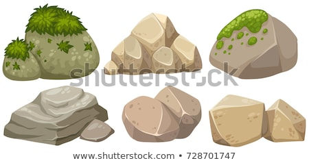 Set of different rocks with leaves Stock photo © bluering