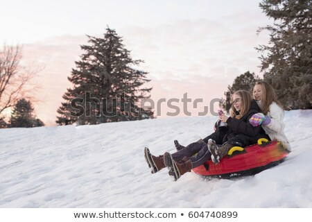 Stock fotó: Tinilány · tart · szánkó · tájkép · hó · tini