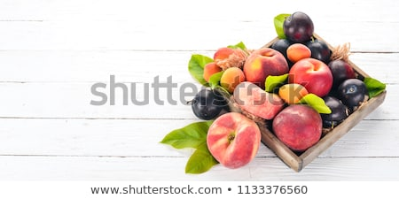 Plums and Apricots Stock photo © craig
