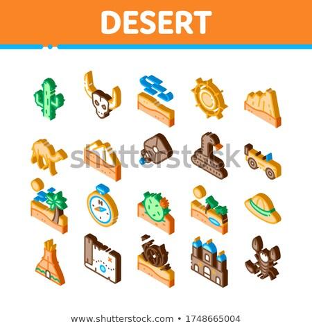 Desert Sandy Landscape Isometric Icons Set Vector Stock photo © pikepicture
