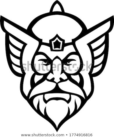 голову Бога мнение талисман черно белые Сток-фото © patrimonio