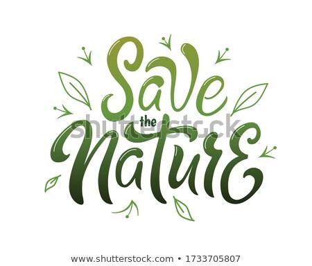 Ecologie tekst milieu natuur blad bladeren Stockfoto © ankarb