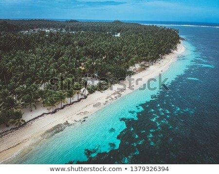 Clear Water and Secluded Beach Stock photo © jkraft5