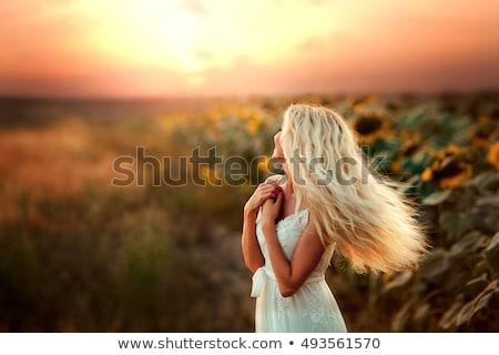 gyönyörű · fotó · elképesztő · nő · divat · barna · hajú - stock fotó © konradbak