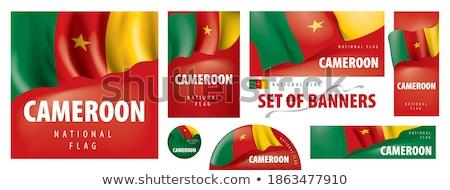 Wektora Kamerun kraju zestaw banery działalności Zdjęcia stock © gubh83
