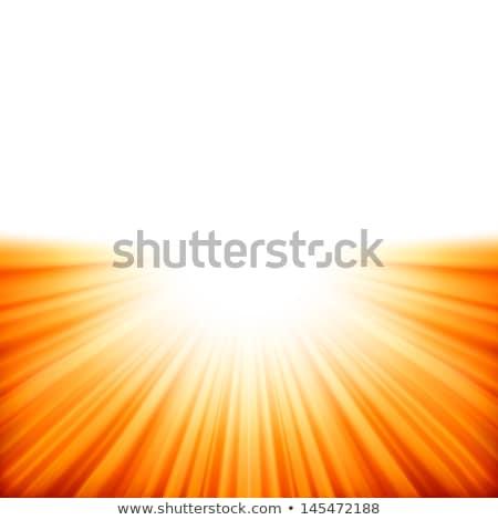 Promienie światło słoneczne eps 10 wektora pliku Zdjęcia stock © beholdereye
