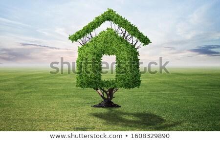 緑 エコ 家 ウィンドウ 芸術 にログイン ストックフォト © djdarkflower