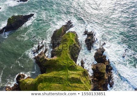 Egyenetlen tengerpart kilátás meredek terméketlen sziklák Stock fotó © Discovod