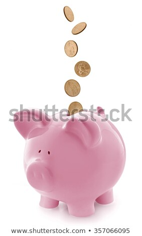 Piggy Gold Coin Stock photo © idesign